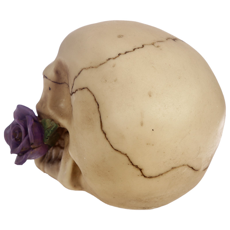 Gothic Skull Decoration with Purple Roses