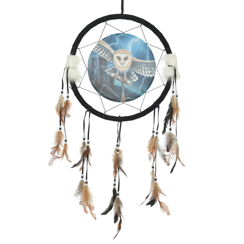 Decorative Heart of the Storm Owl Design Dreamcatcher Medium