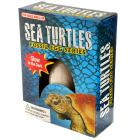 Novelty Toys - Fun Kids Sea Turtle Glow in the Dark Dig it Out Excavation Kit